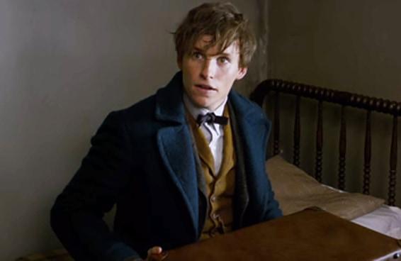"""Estas são todas as menções a """"Harry Potter"""" no trailer de """"Animais Fantásticos"""""""