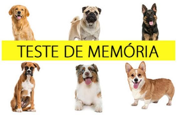 Só quem tem boa memória vai se lembrar de todos estes cachorrinhos