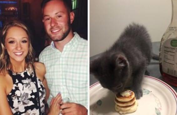 Esse cara fez minipanquecas para seu gatinho e as pessoas amaram a ideia