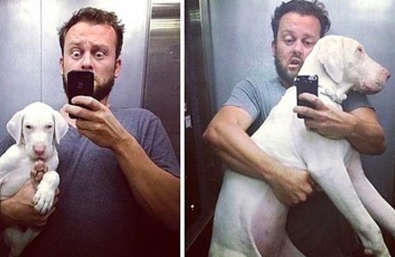 Um cara não sabia quanto tempo sua cachorra iria viver e resolveu fimá-la todos os dias