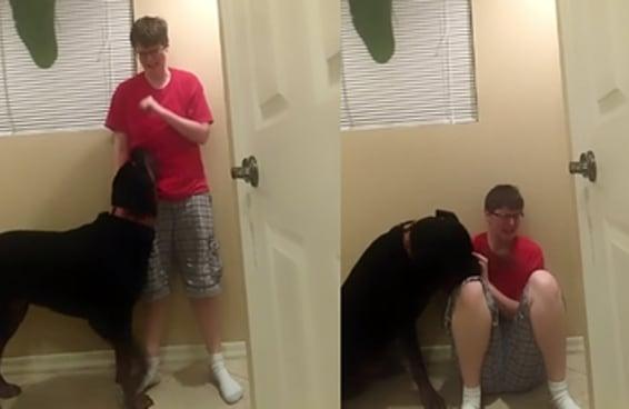 Uma mulher autista fez um vídeo de seu cão a ajudando durante uma crise