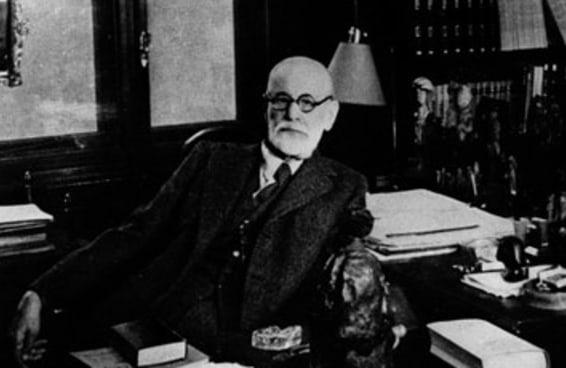 Qual fase do desenvolvimento da infância você não superou segundo Freud?