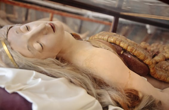 As belas e sinistras obras de cera que ensinaram anatomia feminina aos médicos do século XVIII