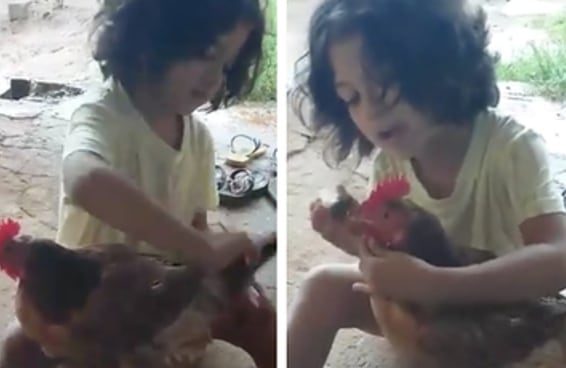 Uma garotinha fez um dia de beleza com sua amiga galinha