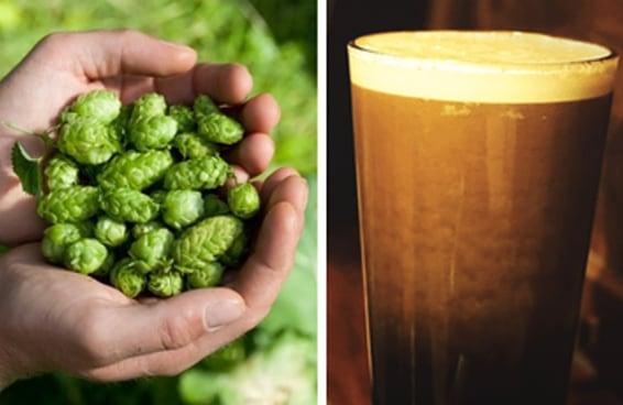 10 fatos sobre cerveja que você nem imaginava serem reais