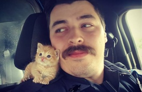 Este policial salvou um gatinho deixado na chuva, e agora eles são uma dupla de combate ao crime