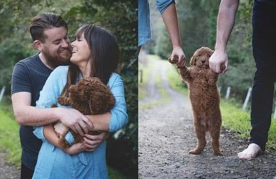 Um casal fez uma sessão de fotos com seu cachorro para dar uma resposta para as pessoas que perguntam sobre bebês