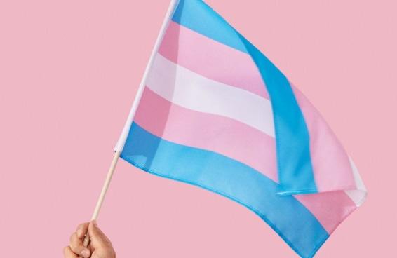 A origem da diferenciação entre travestis e transexuais