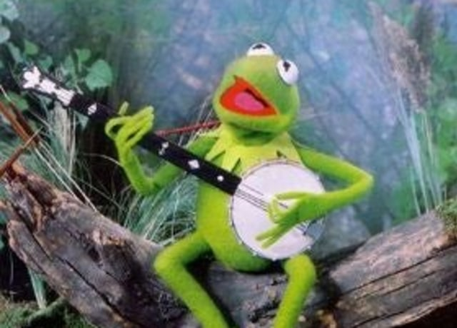 Kermit in a swamp playing the banjo