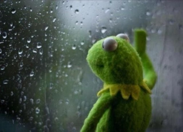 Kermit staring out a rainy window