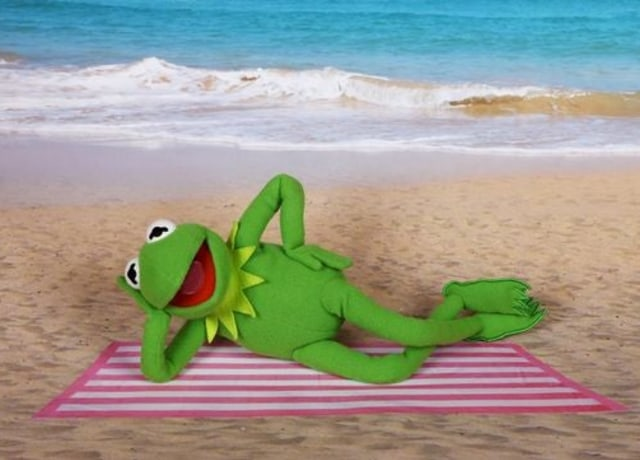 Kermit chilling on the beach and soaking up the sun