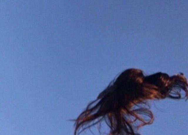 Peruca voando