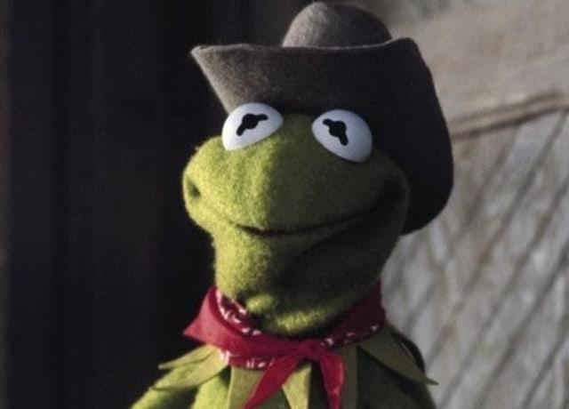 Kermit enjoying life on a farm