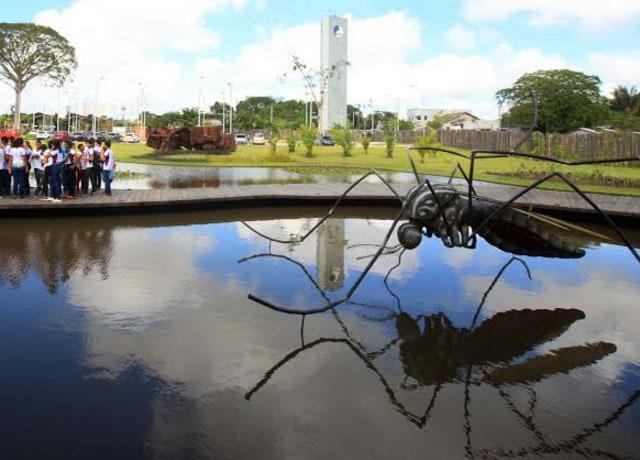 Um mosquito gigante, super realista, no meio de uma lagoa