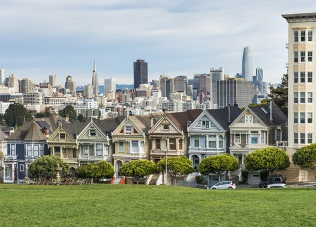image of green grass and skyline in san francisco