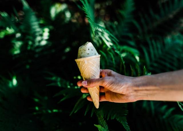 person holding ice cream