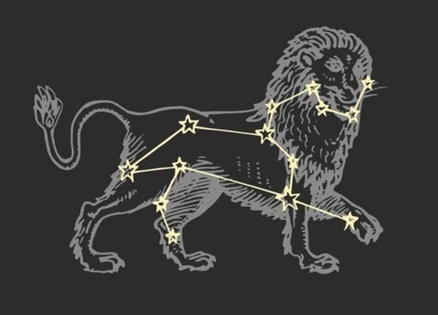 Lion with Leo constellation