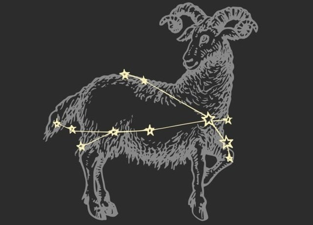Ram with Aries constellation