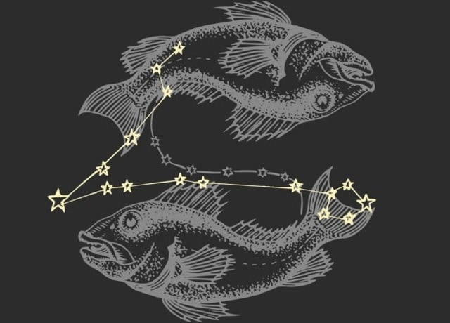 Fish with Pisces constellation