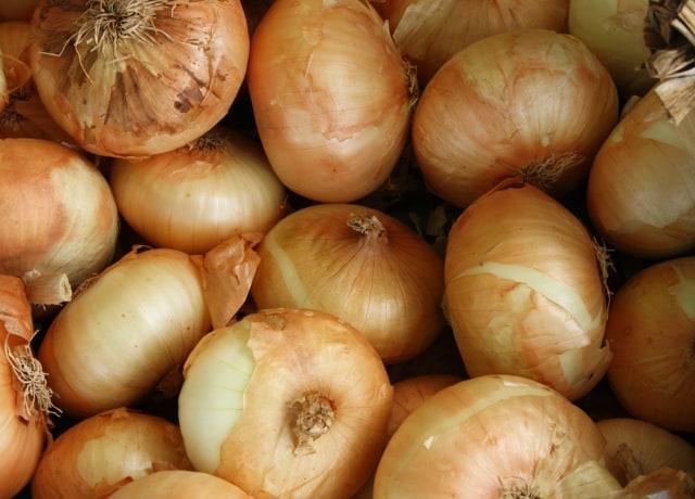 brown onion lot