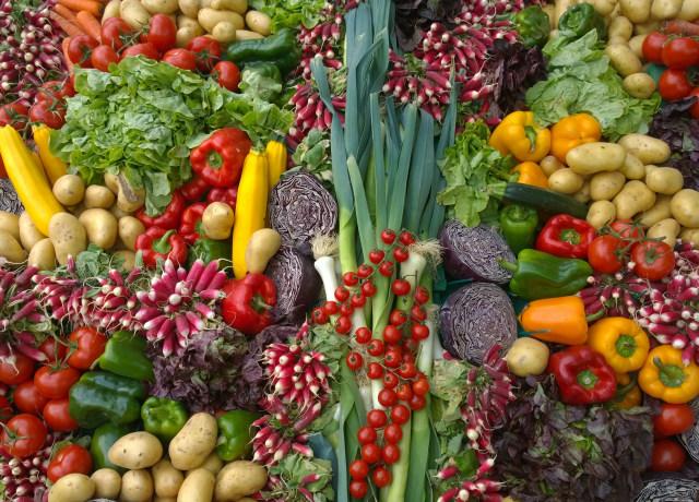 variety of vegetables