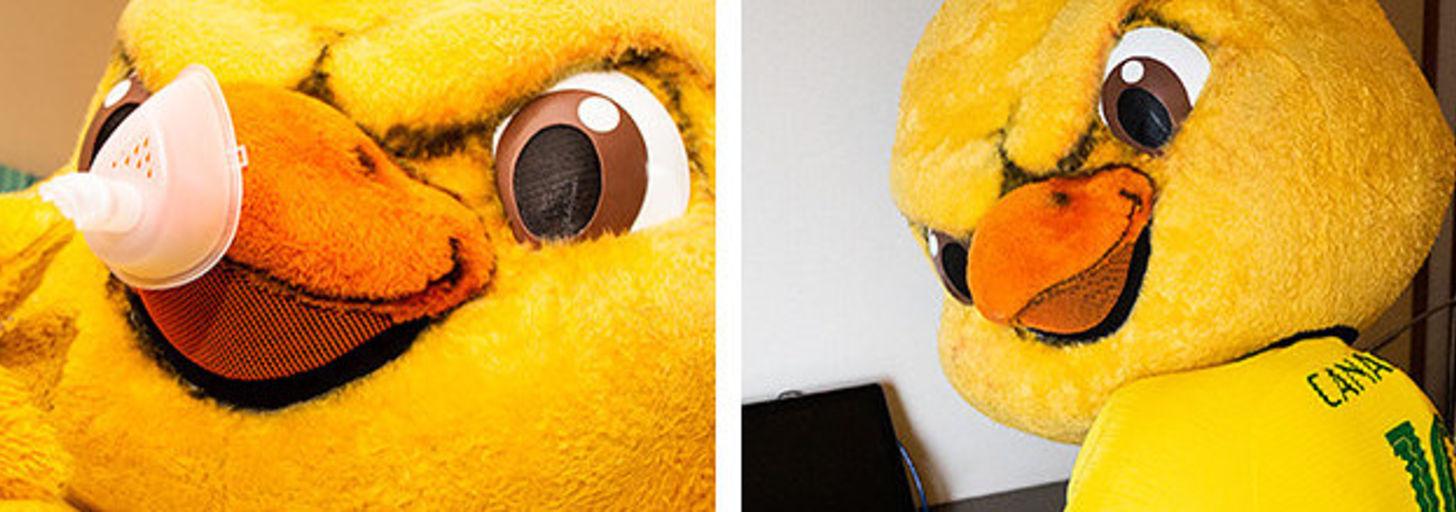 """O """"Canarinho"""" não é o mascote que a gente pediu, mas é o que a gente merece"""