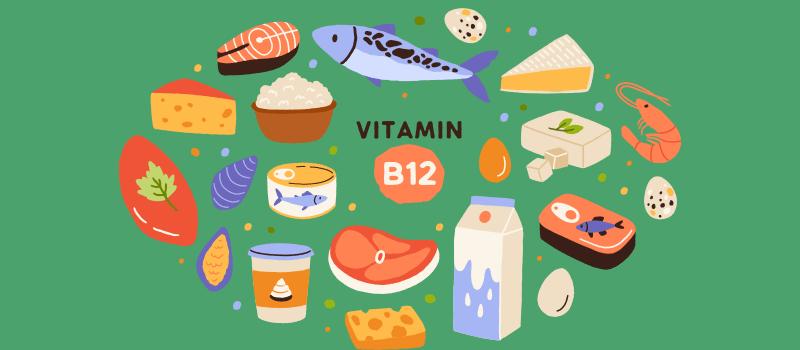 vitamin d sources cartoon