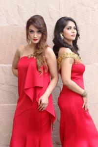 Festive Collection by Designer Payal Sethi (5)