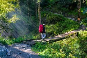 parvati-valley-trek-5-795x530