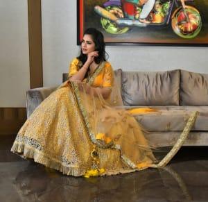 Festive Collection by Designer Payal Sethi (4)