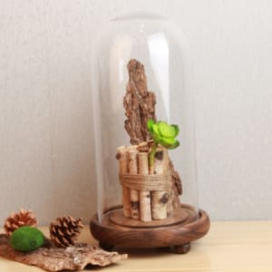 Tripod-logs-wooden-base-glass-cover-glass-decoration-decoration-crafts-shop-decoration-glass-jar