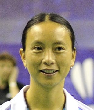 PI Hongyan