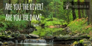 The River or the dam