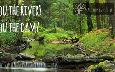 Are you the river or the obstacle?