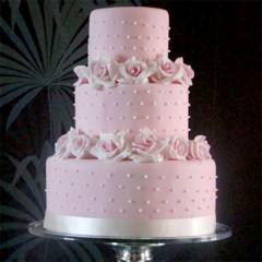 Kuchen Torten 06