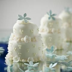 Kuchen Torten 105