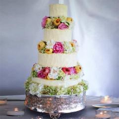 Kuchen Torten 14