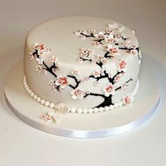Kuchen Torten 57