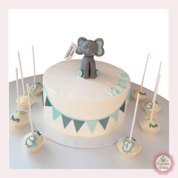 Motivtorte mit Cake Pops - Kindergeburtstagstorten