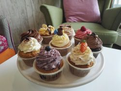 Oster Cupcackes