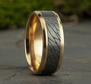 Ring CF948815GTAY