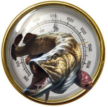 Hogyan harapnak a halak a légnyomás hatására (barométerben):