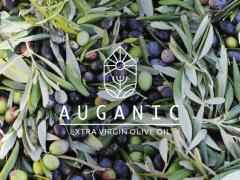 AUGANIC 橄欖油品牌形象設計