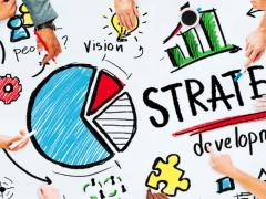 Business development strategies -Shimon Yelinek