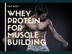 Why Is DP Whey Depot Protein The Best For Muscle B