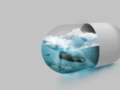 Ocean Capsule