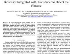 IEEE paper 2007