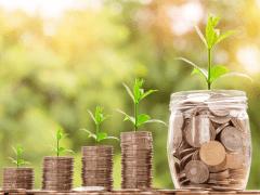 Canadian Investing Basics