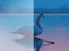 [影音]下雨特效