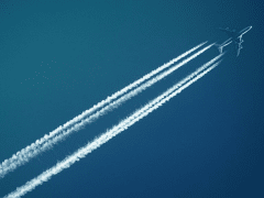 Overnight Economy Flights: How to Survive